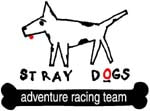 TEAMSTRAYDOGS.COM